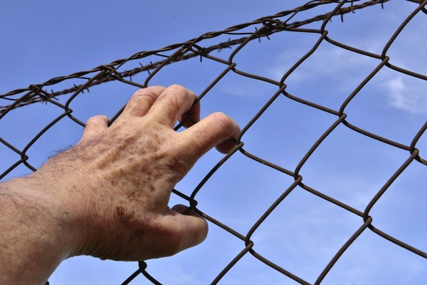 barbed-wire-1408454_960_720