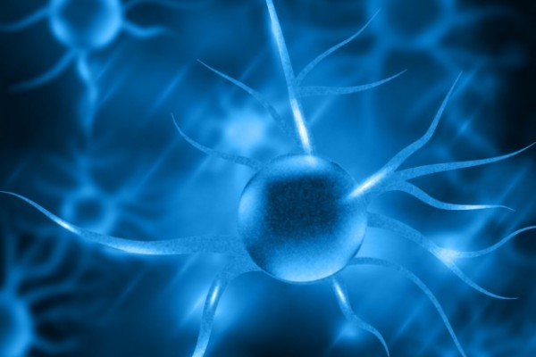 http://www.freepik.com/free-vector/blue-nerve-cells_837998.htm#term=molecule&page=1&position=33