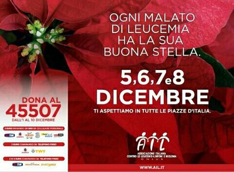Le stelle di natale dell ail nelle piazze d italia for Stelle di natale ail 2016