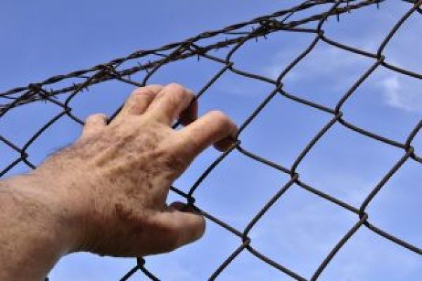 barbed-wire-1408454_960_720-600x400-320x213